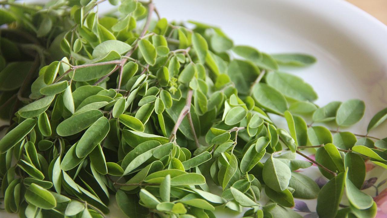 Yamang Bukid Healthy Products Inc  | Turmeric 10 in 1 Tea
